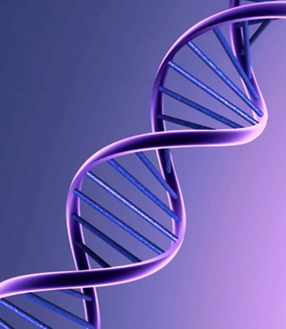 Insurance and Genetic Testing